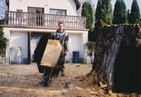 202cm átmérőjű fa kivágása kis udvarban